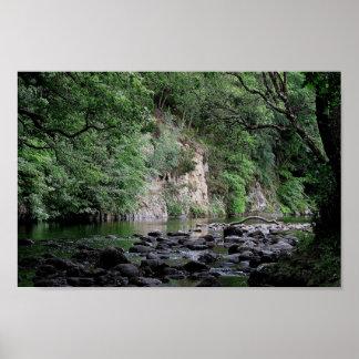 Dartmoor River Dart Holne Chase In Summer  ( 2 ) Poster