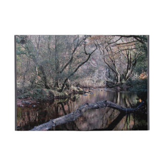 Dartmoor River Dart Valley Holne Chase Autumn . 1 iPad Mini Cover