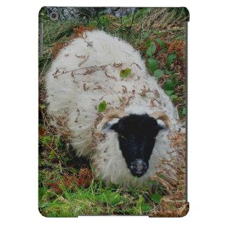 Dartmoor Sheep In Hiding Cover For iPad Air