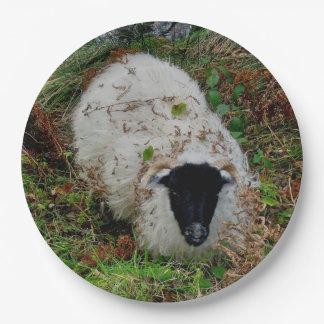 Dartmoor Sheepm en la ocultación Platos De Papel