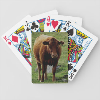 Dartmoor South Devon Cow Bicycle Playing Cards