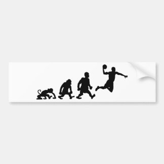 DARWIN basket.png Bumper Sticker