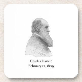 Darwin Coaster