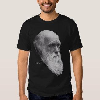 darwin, Darwin Playera