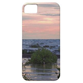Darwin en el mojado iPhone 5 fundas