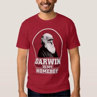 Darwin es mi Homeboy Playeras