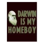 Darwin es mi Homeboy Tarjeta Postal