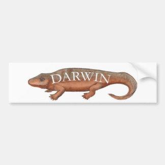 Darwin Evolution Tetrapod Car Bumper Sticker