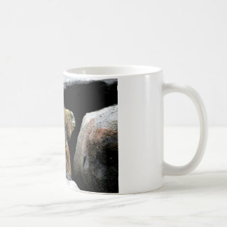 Darwin finch hitchhiking on marine iguana coffee mug