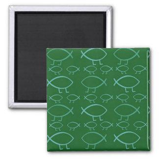 Darwin Fish Magnet