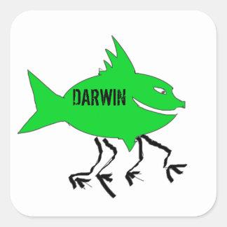 Darwin fish square sticker