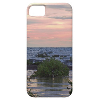 Darwin In The Wet iPhone 5 Cover