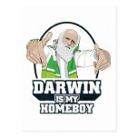 Darwin Is My Homeboy (Full Color) Post Cards