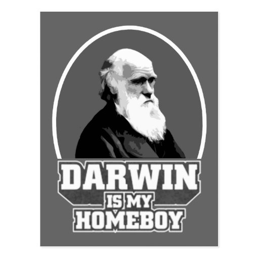 Darwin Is My Homeboy Post Cards