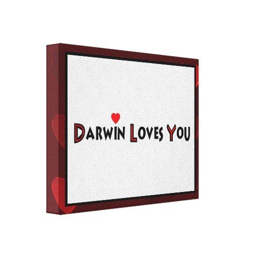 Darwin le ama lona estirada galerias