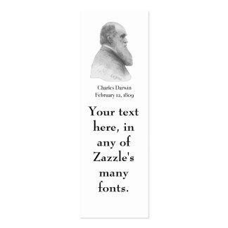 Darwin Mini Business Card