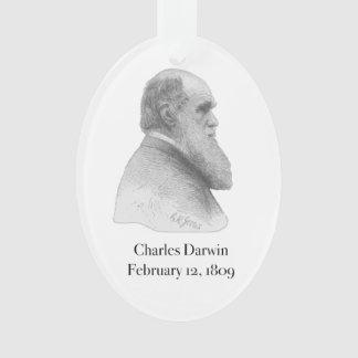 Darwin Ornament