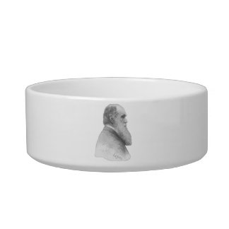 Darwin Pet Bowls