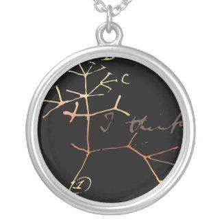 Darwin, pienso el árbol en vida collar plateado