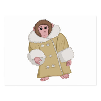Darwin que Ikea Monkey Postal