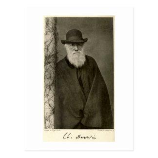 Darwin que se coloca al lado de un pilar publicad tarjeta postal