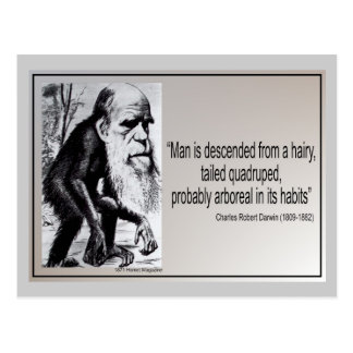 Darwin Quote Man is Descended From a Hairy Post Cards