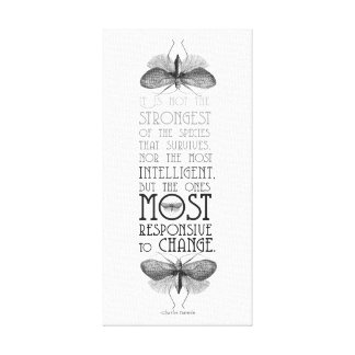 Darwin Quote Survival Of Most Adaptable Canvas Print