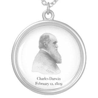 Darwin Silver Plated Necklace