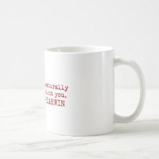 Darwin Taza De Café