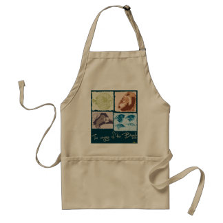 Darwin, The Voyage of the Beagle. Apron