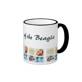Darwin, The Voyage of the Beagle. Mug