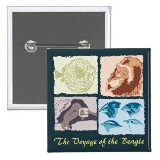Darwin, The Voyage of the Beagle Pin Cuadrado