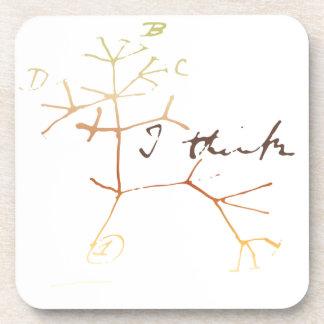 Darwin tree of life: I think Drink Coaster