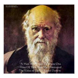 """Darwin """"Value Of Life"""" Wisdom Quote Posters"""