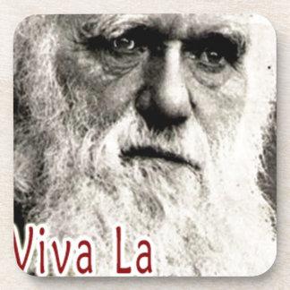 Darwin - Viva La Evolution! Coasters