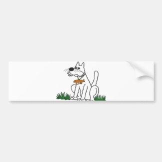 Darwin's Cat Car Bumper Sticker