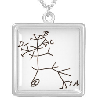 Darwin's Tree Silver Plated Necklace