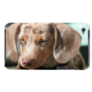 Daschund Dog iTouch Case Barely There iPod Cases