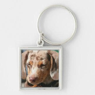 Daschund Dog Keychain