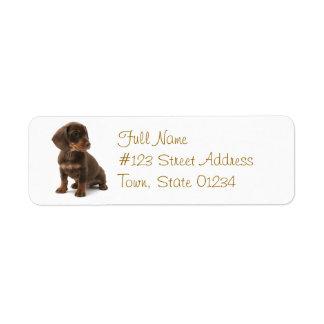 Daschund Dog Return Address Label