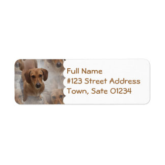 Daschund Rescue Mailing Label