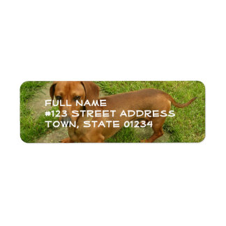 Daschund Return Address Mailing Label