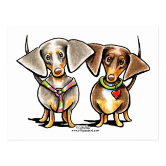 Dashing Dappled Dachshunds Postcard