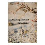 Dashing meerkat pup - Seasons Greetingcard Greeting Cards