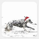 Dashing Through the Snow Stickers