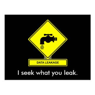 Data Leakage Postcard