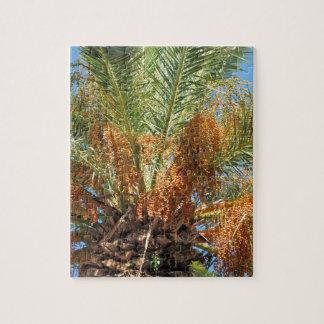 Date palm jigsaw puzzle