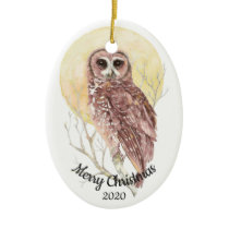 Dated Christmas Custom Watercolor Moon Owl Bird Ceramic Ornament