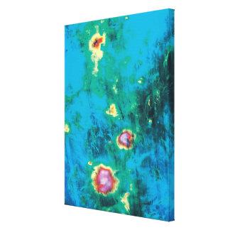 Datos de imagen del radar impresiones en lienzo estiradas