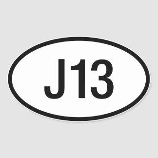 Datsun Nissan J13 Engine Sticker